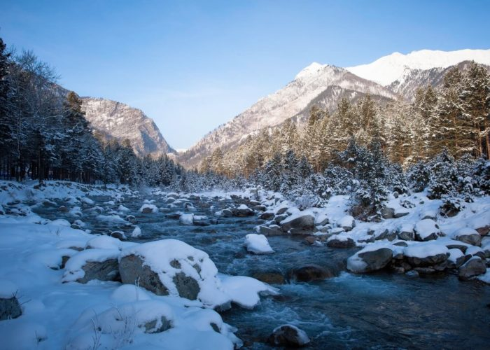 Winter arshan river trees mountains