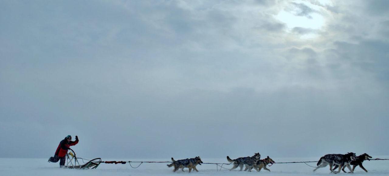 Sled dogs running across the lake Baikal